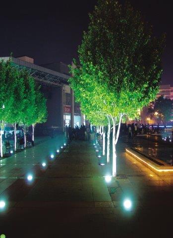 SUL16 - LED 6w Garden light 316 Stainless In ground Up lighter